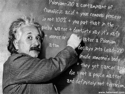 Undersøkelsen om israeleres forhold til forskning ble publisert på Albert Einsteins bursdag 14. mars.