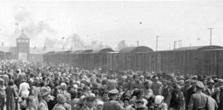 Seleksjon av jøder på jernbaneperrongen til Auschwitz-II (Birkenau) i 1944. (Foto: Wikimedia Commons)