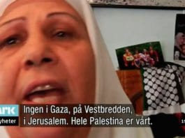 Ikke mange signaler om fred fra denne palestinske kvinnen som NRK Dagsrevyen ga mikrofonen til 11. november 2012. (Skjermdump fra NRK)