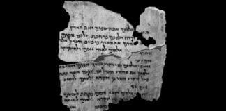 Manuskriptet 4Q7-4Q Gen er et utdrag fra Toraen (1. Mos). (Foto: Shai Halevi)