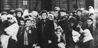 Jøder fra Ungarn ankommer konsentrasjonsleiren Auschwitz sommeren 1944. Kunne deres skjebne blitt annerledes dersom Israel ble opprettet før krigen? Etter krigen var det ingen land i Europa som ville ha de få som overlevde.