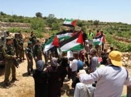 Palestinske demonstranter og IDF-soldater i Beit Ommar, juni 2011. (Illustrasjon: PSP Photos, flickr.com)