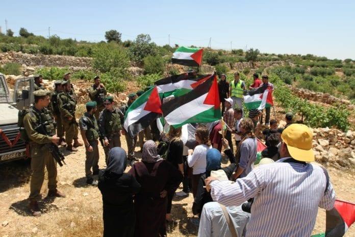Palestinske demonstranter og IDF-soldater i Beit Ommar, juni 2011. (Illustrasjon: PSP Photos, flickr.com)