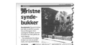 Faksmile fra Dagens Næringsliv lørdag 27. august.