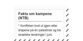 Skjermdump av NTBs faktaramme 22. juli 2014.