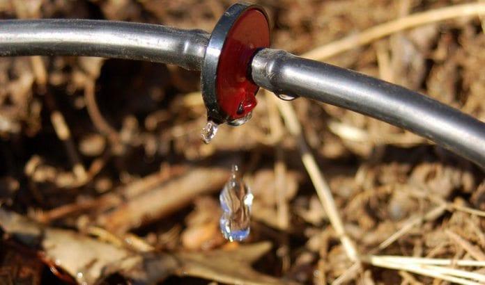 Dryppvannsteknologi sørger for at hver dråpe kommer til nytte når åkrene vannes. (Illustrasjonsfoto: Joby Elliott / Flickr.com)