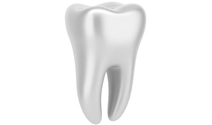 3D-modell av en tann. (Foto: Ingimage, via jpost.com)