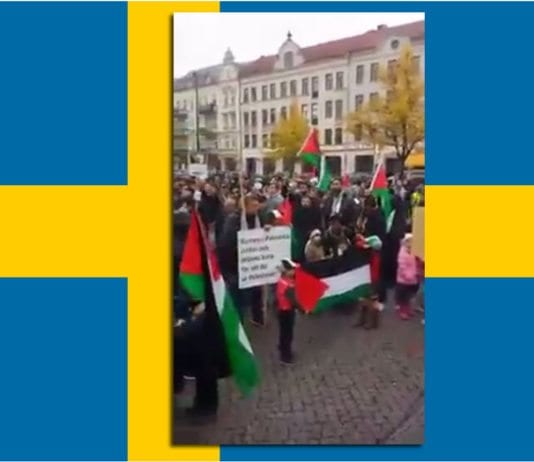 Skjermdump fra demonstrasjonen i Malmö 18. oktober 2015.