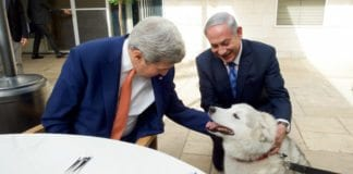 John Kerry hilser på Kaia, Netanyahu-familiens hund (Foto: GPO / Flickr.com)