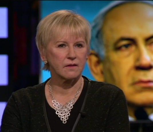 Sveriges utenriksminister Margot Wallström vekker sterke reaksjoner i Israel med sine uttalelser. (Foto: Skjermdump fra SVT-programmet Agenda)