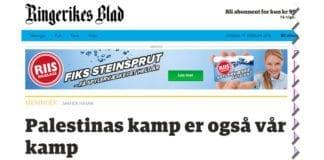 Skjermdump fra Ringerikes Blad.
