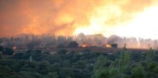 Skogbrannen på Karmelfjellet i 2010. Bildet er tatt i nærheten av den drusiske byen Issafiya, som er nær universitetet i Haifa. (Foto: Ronit Ben Zvi, Wikimedia Commons)
