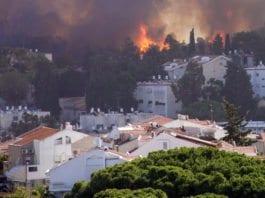 Brann i Haifa 24. november 2016. (Foto: David King, flickr)