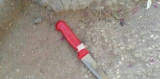 En palestinsk mann ble skutt og drept da han forsøkte å drepe en kvinnelig soldat. (Foto: Politiet)