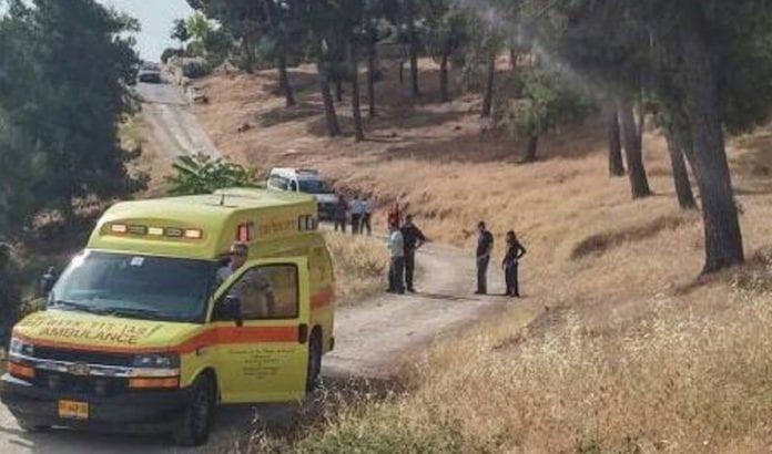 To eldre kvinner ble knivstukket i Armon Hanatziv i mai 2016. (Foto: Magen David Adom)