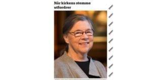 Skjermdump fra Budstikka.no.