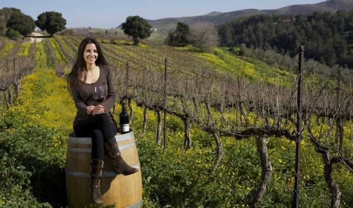 Kineserne kan ikke få nok av israelsk vin. Her fra en vingård i Nord-Israel. (Foto: Doron Horowitz/Flickr)