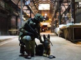 Hunder har mange oppgaver i det israelske forsvaret. (Foto: Eden Brian/IDF)