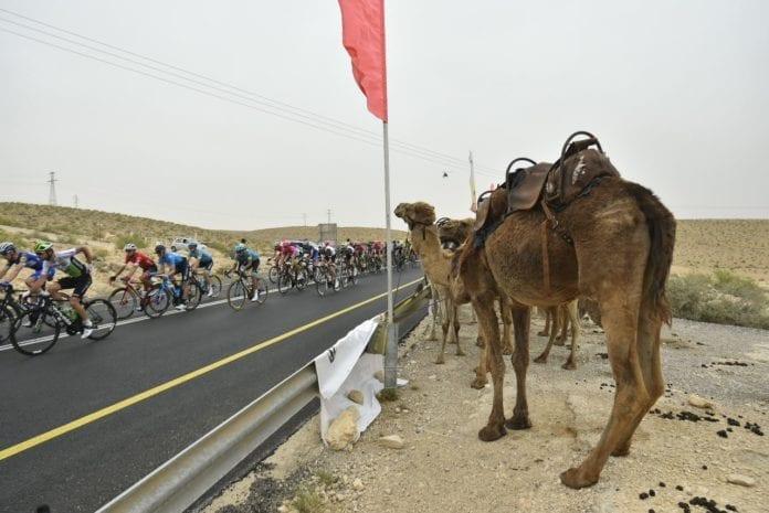 Selv kamelene heiet frem syklistene. (Foto: Facebook)
