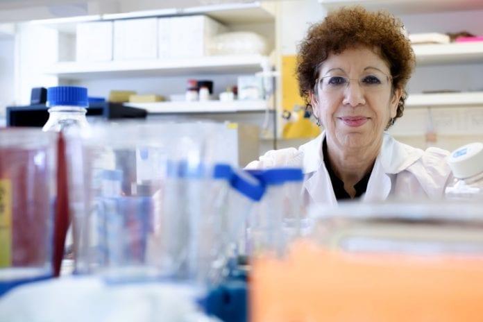 Professor Varda Shoshan-Barmatz har ledet forskningsarbeidet ved universitet. (Foto: BGU)