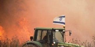 De kraftige brannene som dragene forårsaker, har så langt ikke kostet menneskeliv, men har gått hardt utover dyrelivet.