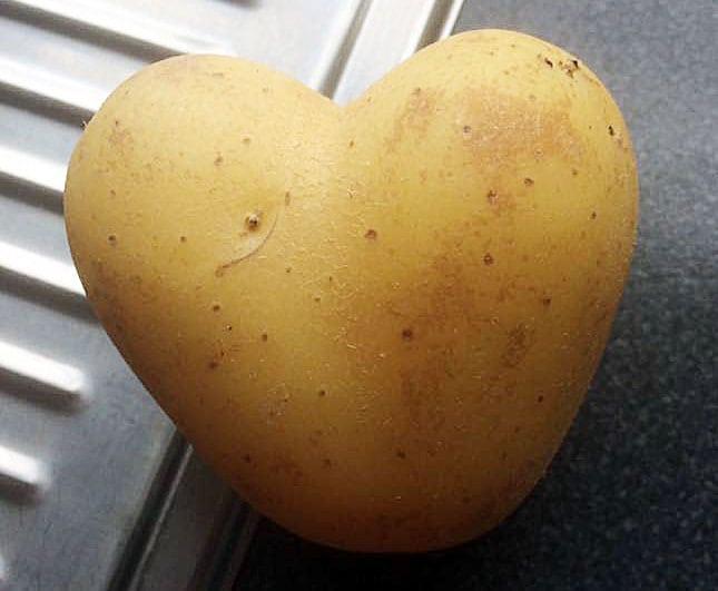 Kjøp israelske poteter! (Foto: Marlynn Aanonsen)
