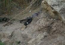 En Kalashnikov-rifle funnet der terroristene ble rammet. (Foto: IDF)