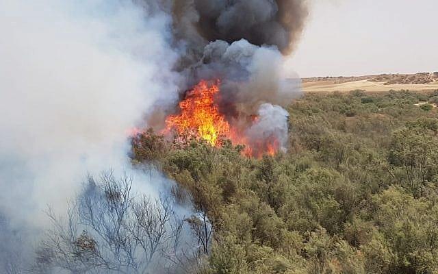 De siste månedene har over tusen branner herjet i Sør-Israel, men nå har situasjonen roet seg. (Foto: Brannvesenet)