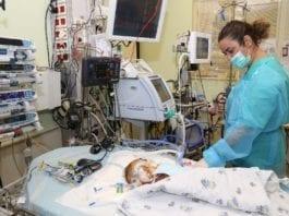 Den palestinske babyen Musa kjemper for livet etter å ha fått et nytt hjerte av et jødisk barn. (Foto: Sheba-sykehuset)