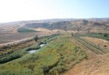 Dette er deler av området som Israel har lånt av Jordan til israelsk jordbruk. Tidligere var området nesten en ørken. (Foto: Shmuel Bar-Am)