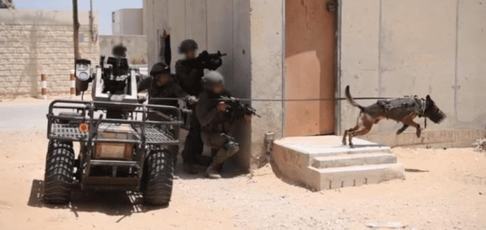 Det israelske forsvarets nye